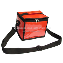 Portable Mini Cooler Insulated Food Delivery Cooler Lunch Bags Kids for camping