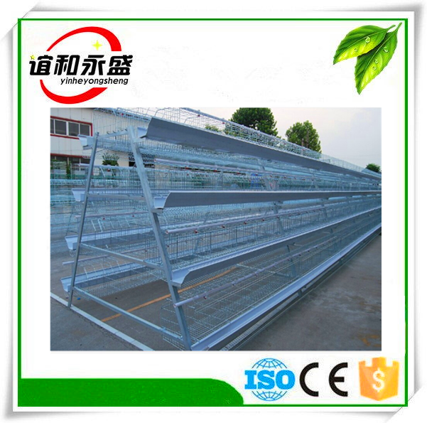 CE 4 Layers cage capacity 128 quail cageon hot sale commercial quailcages / bird cage /chicken cage quail farm equipment YHYS