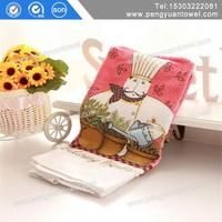 cleaning towel Environmentally Friendly Products coral fleece towel for kitchen