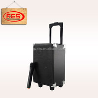 Pro wooden active outdoor trolley speaker with battery