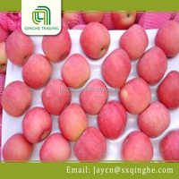 bulk fuji apples wholesale