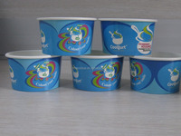 500ml disposable paper ice cream paper tub with paper lid