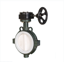 CI,DI,WCB,SS Full PTFE Lined Wafer Butterfly Valve Pn16 fire fighting equipment