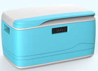 Large Flat Plastic Storage Container With Lid, Lockable Plastic Storage Container 3 Sizes Available