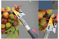 telescopic fruit picking tools