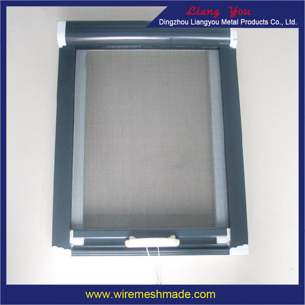 Dingzhou iron wire window screen hot sale buy square for Window screens for sale