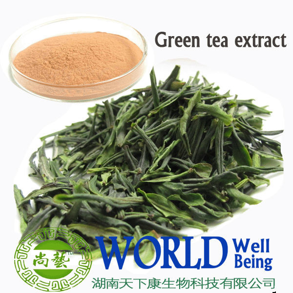 Factory supply Protocatechuic aldehyde 98%/Green tea extract/Antibiotic
