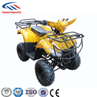 110cc small ATV for Kids on Sale EPA and EEC Approved