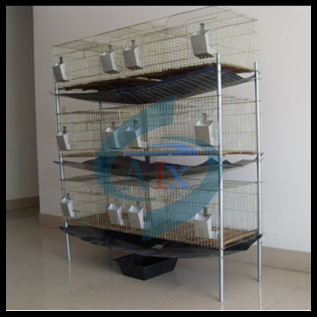 rabbit breeding cage /rabbit farming cage