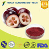 HACCP & KOSHER Certified Natural Fruit Extract Anti-aging Cranberry Extract