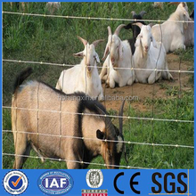 farm/corral/grassland fence with professional production quality
