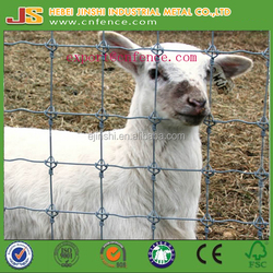 high tensile fixedd knot deer fence manufacture in China