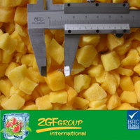 Fresh Good Quality organic dried mango