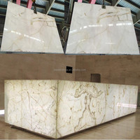 Interior architectural decoration Stone Translucent Grade A Cheap Snow White Onyx Absolute White Onyx Slab for Tile and Tops