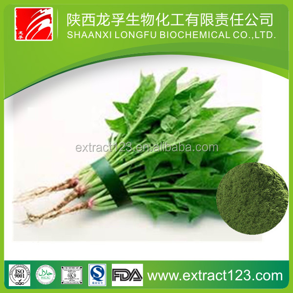 Factory sales super chlorophyll unicity