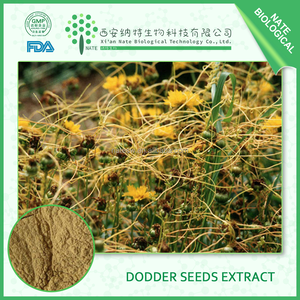 Natural Sex Medicine Men Health Care Product Chinese 5:1 Dodder Seed Extract