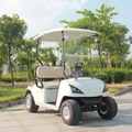2017 Hot Selling Electric Golf Cart with 2 seats DG-C2 with CE approval