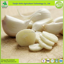 Manufacture price wholesale dry white garlic