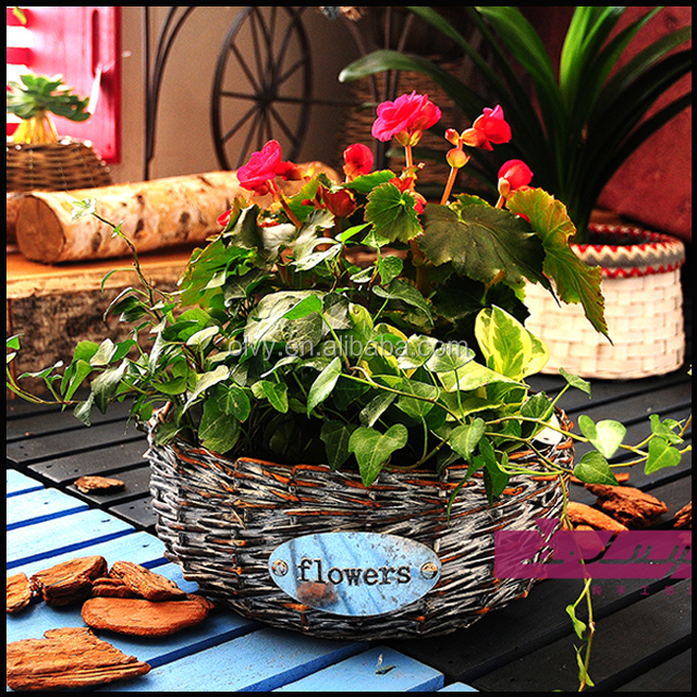 Hot grey natural oval shape flower wicker basket home decorative items 150023