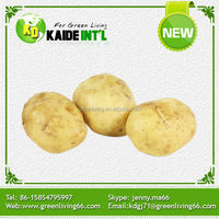 2014 fresh chinese yellow potato big size (75-100gram)(100-150gram)(150-250gram up)
