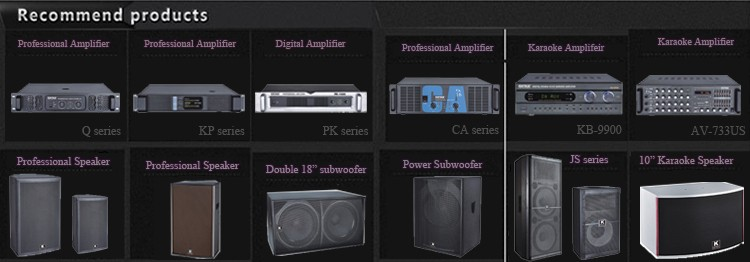 250W 2 Channels Audio Power Amplifier with Guitar Input