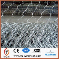 Coated galvanized hexagonal lowes chicken wire mesh roll price/ Galvanized Hexagonal Wire Mesh/animal cage