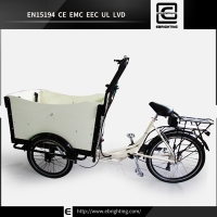 recumbant adult new BRI-C01 covered tricycle for sale