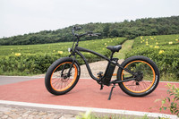 EEC approved coffee bicycle coffee bike electric tricycle with rear motor