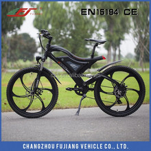 2015 Hot selling e-bike conversion kit with 36v 10ah li on battrry