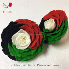 United Arab Emirates Color eternal roses 9-10cm king size preserved flower