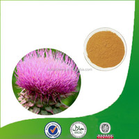 ISO, KOSHER, GMP and FDA Certified Silybum Marianum Milk Thistle Seed Extract