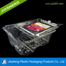Large Plastic Fruit Container With Lid