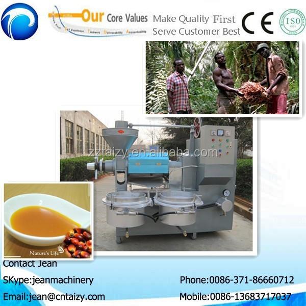 l 39 huile d 39 argan palm fruits tournesol sur la graine de