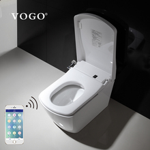 Smart elder disabled people toilet for disable