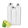 /product-detail/550ml-750ml-1000ml-water-bottle-glass-bpa-free-drinking-glass-water-bottle-60792706907.html