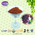 100% natural Grape Seed Extract OPC/grape seed powder(Proanthocyanidins)