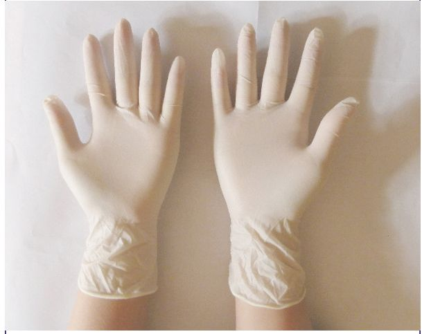 Latex Examination Gloves Prices