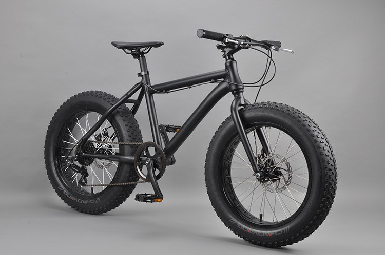 20 inch Fat bike china dirt bikes