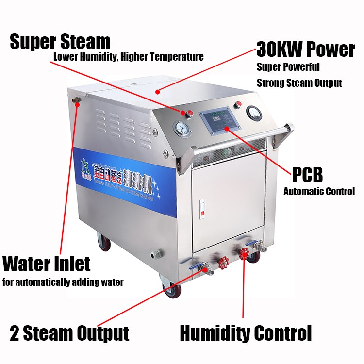 Steam Cleaner-OEM in Power