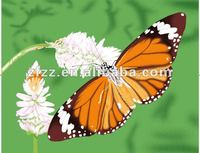 100% polyester polar fleece baby blanket with The butterfly print