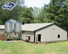 Prefabricated Poultry Farm Steel Chicken Broiler Houses Design