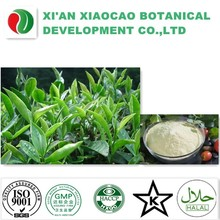 Best Price Pure Camellia Seed Extract Tea saponin 80%
