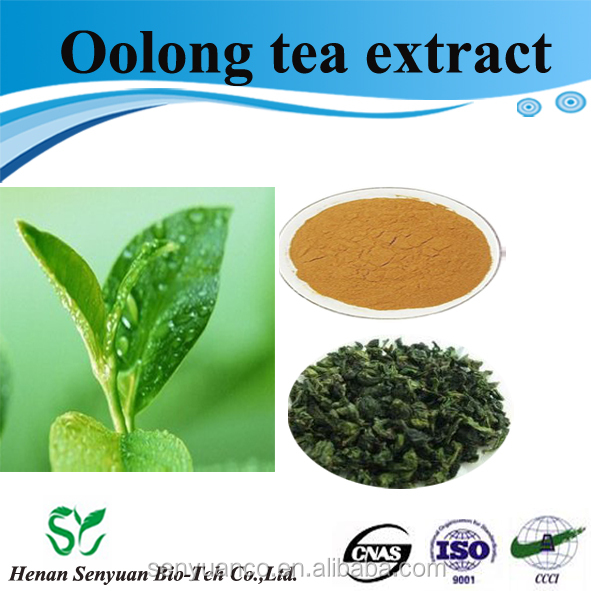Factory directly supply Chinese herbal extract oolong tea extract 50%Polyphenols