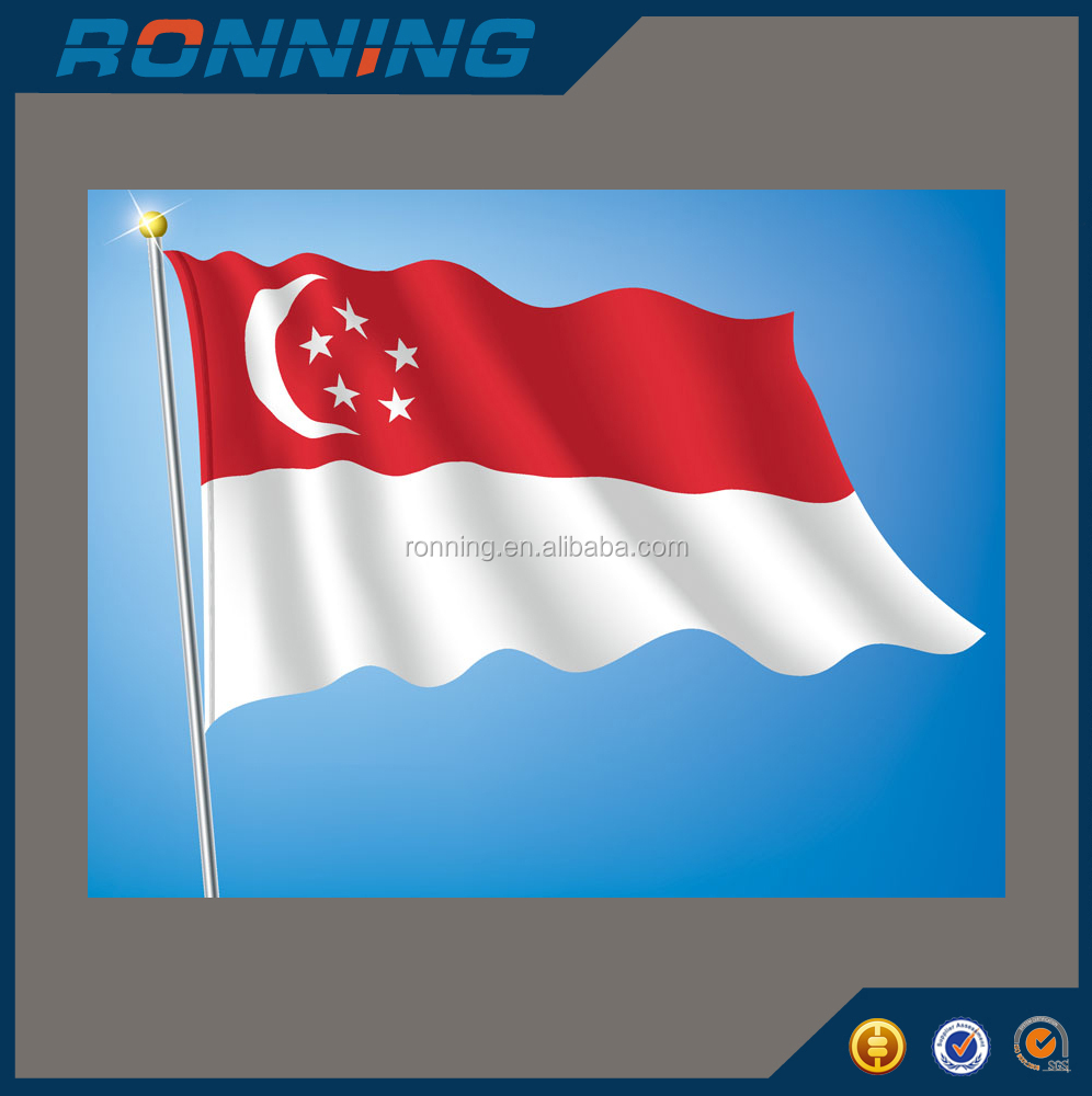 All country Singapore Indonesia Vietnam National flag