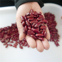 Naturally Grown Dark Red Kidney Bean