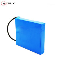 Lithium Ion Battery Battery Pack for Solar LED Lamp with superior quality 12V 10Ah Lifepo4