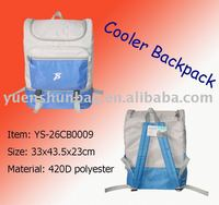 disposable cooler bag factory Backpack type insulated cooler bag for picnic keep cool for long time
