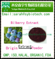 100% Natural Bilberry Extract Anthocyanidins 25%