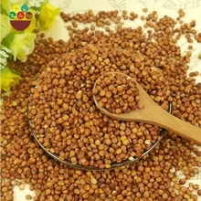China manufacturer organic natural 3mm red sorghum for export