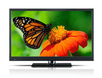 cheap brand lcd tv 21 inch led tv/build in dvd/hdm i and us.b/dvbt-2